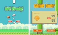 Flappy Bird Is Getting Over Announced By the Developer : Flappy Bird Group Photos