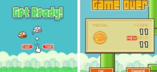 Flappy Bird Is Getting Over Announced By the Developer: Flappy Bird Group Photos