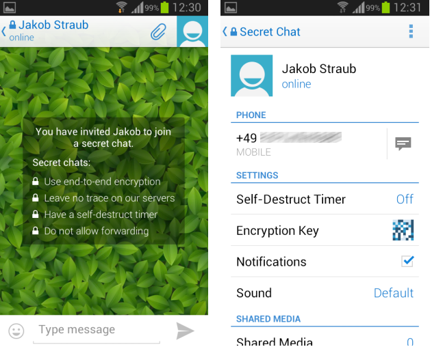 telegram-screenshot-3.jpg