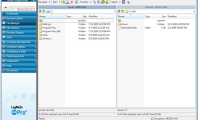 Organize the Remote Access with LogMeIn: Download LogMeIn